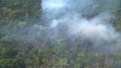 Mourão não diz inverdades sobre a Amazônia