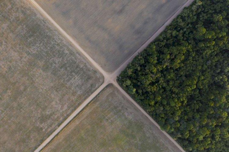 O Conselho da Amazônia e projeto nacional brasileiro: o papel do Congresso Nacional
