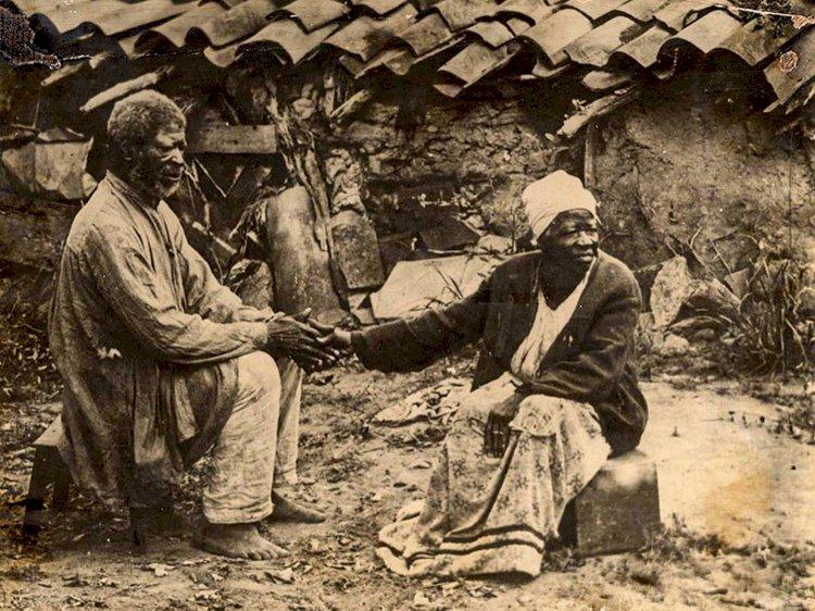 Há 170 anos, Lei de Terras oficializou opção do Brasil pelos latifúndios