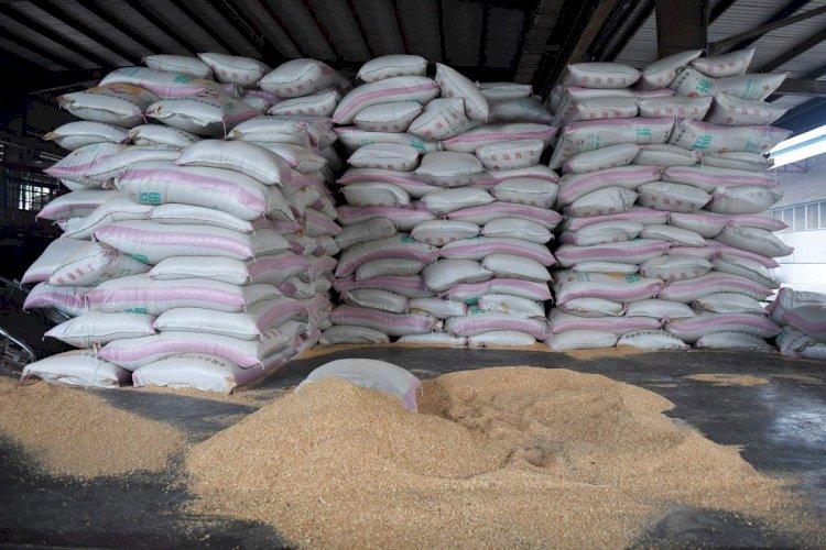 China passa a comprar soja da Tanzânia para reduzir dependência do Brasil