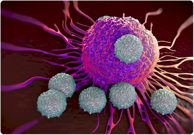 O que diz o maior estudo sobre imunidade à covid