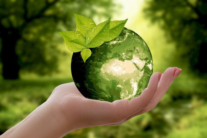 ESG: três letras que estão revolucionando o mundo dos negócios