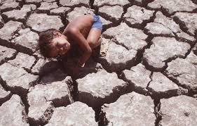 Os rios e lagos do Brasil estão desaparecendo?