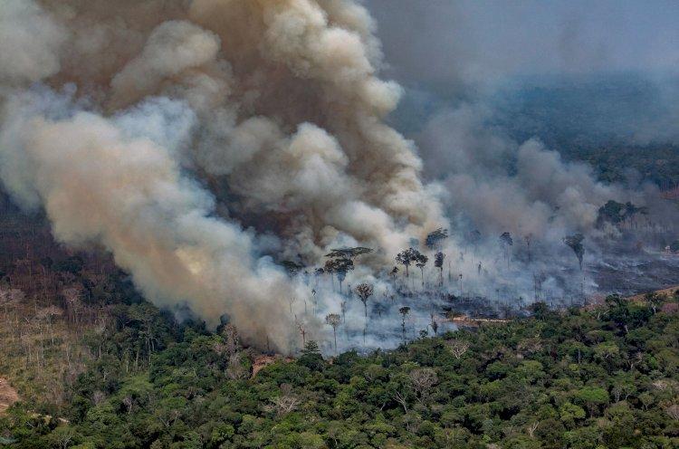 AMAZÔNIA EM CHAMAS, UMA RADIOGRAFIA DE FOGO E VIOLÊNCIA EM RONDÔNIA
